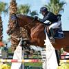 Two Wins in Two Days for Margie Engle at National Sunshine Series FEI Week