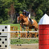 Molly Ashe Cashes Out in the $15,000 Kindred Bio Jumper Prix at HITS Saugerties