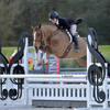 HITS to Host the 2017 and 2018 US Junior Hunter National Championship at HITS Saugerties