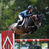 Damico Takes Home Top Honors in the Hunter and Jumper Rings