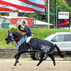 The Chronicle of the Horse - Perseverance Pays Off For Jonathan McCrea At HITS Saugerties