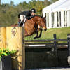 HITS Hosting these USHJA Events in 2021!