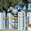 Aaron Vale Dominates Competition at HITS Ocala Holiday Classic