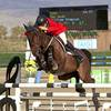 Will Simpson Remains Unbeaten in HITS Thermal Grands Prix, Takes Latest $50,000 Horze Equestrian Grand Prix Win on The Dude