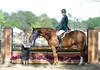 Robert Lee Victorious in $50,000 East Meets West Hunter Challenge